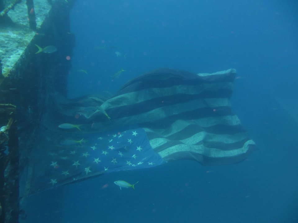 USA Flagge weht in der Strömung