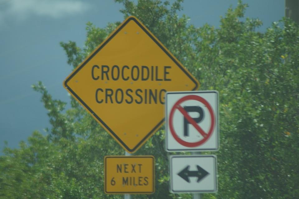 Achtung! Krokodile können die Straße kreuzen...