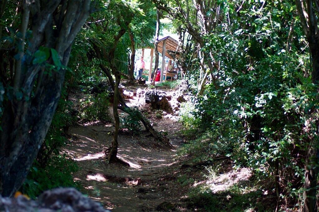 Der Weg zu den Klippen
