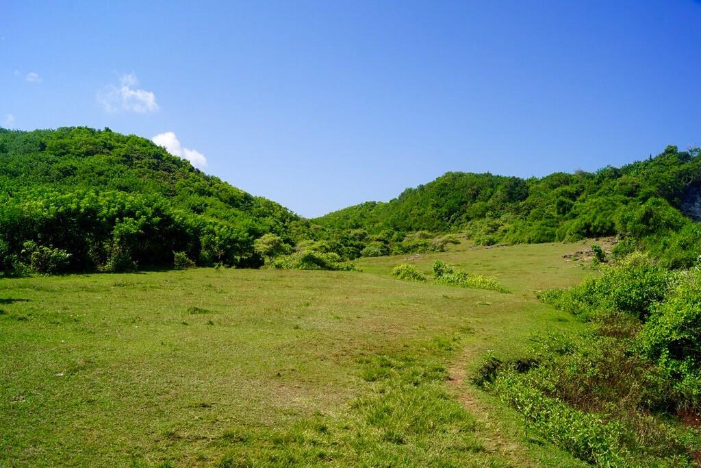 Die saftig grüne Natur im Umland