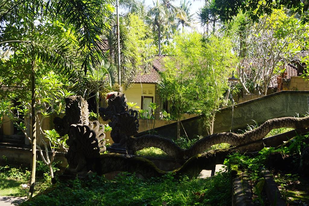 Drachentreppe im Dschungel