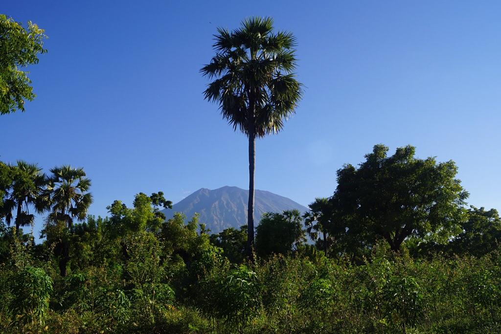 Der über 3000m hohe Vulkan (Tulamben)