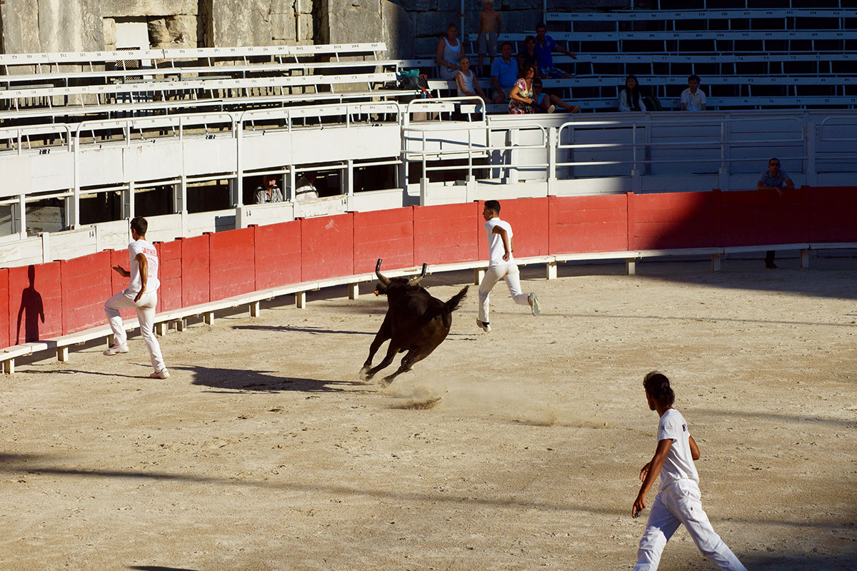 Unblutiger Stierkampf in Arles